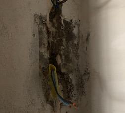 ELECTRIC INSTALL - FOTOVOLTAICA Y ELECTRICIDAD